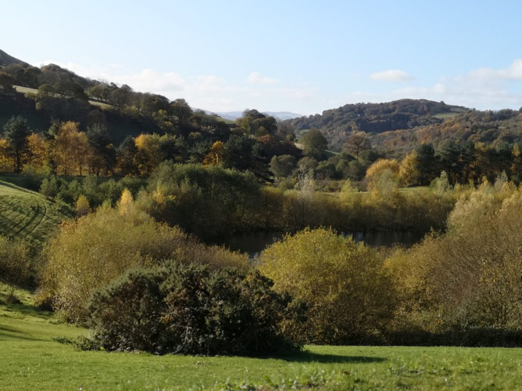 Benefits of buying a luxury holiday lodge on Maes Mynan Park